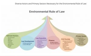 Environmental Rule of Law